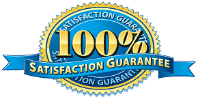 100 Satisfaction in Resume Writing