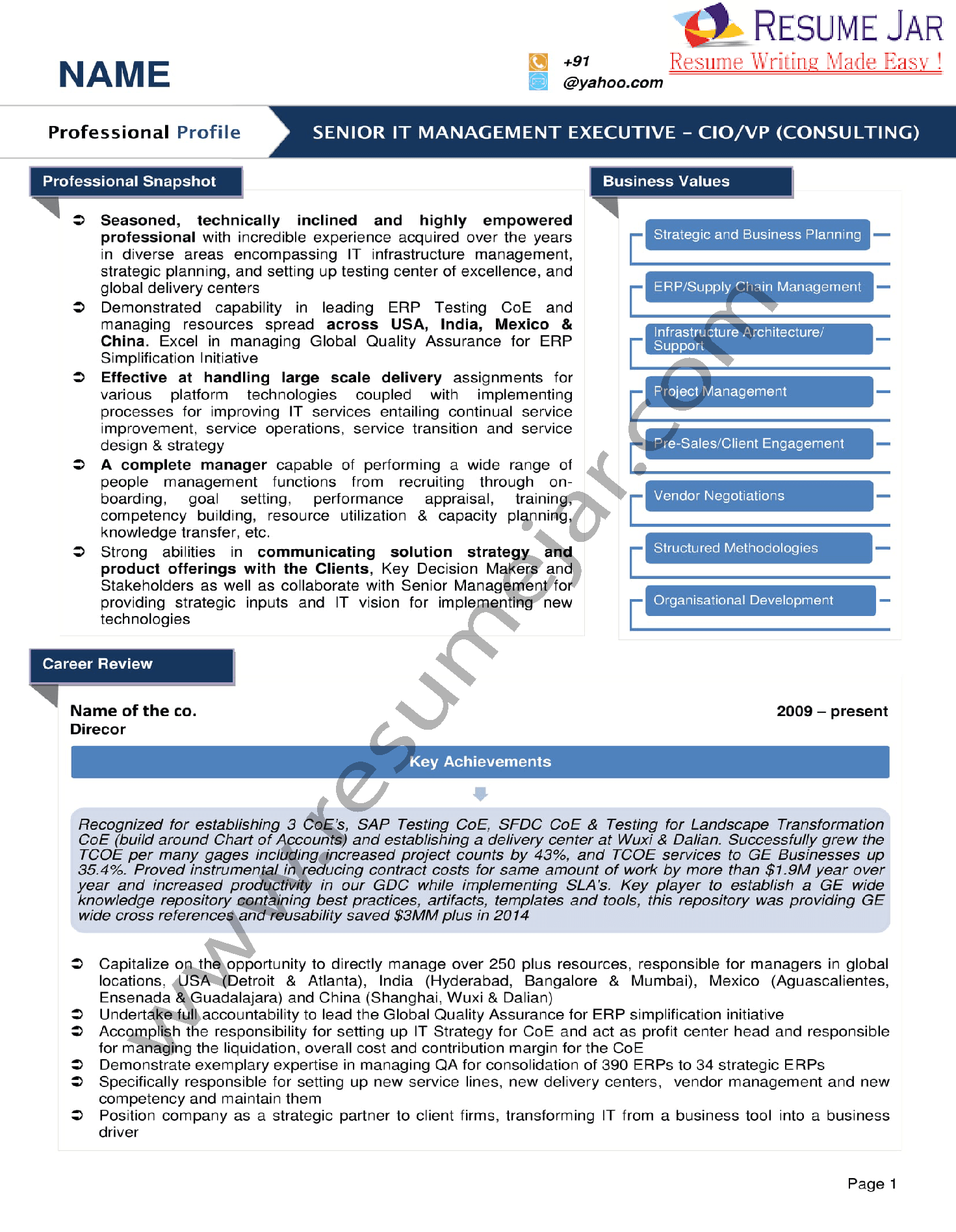 graphical resume samples